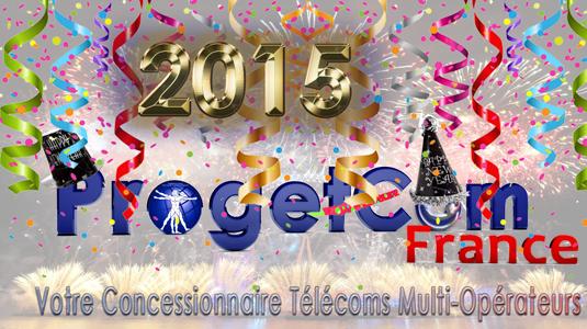 Bonne Annee 2015 avec ProgetCom France